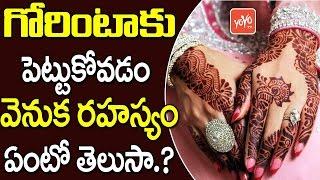 గోరింటాకు పెట్టుకోవడం వెనుక రహస్యం ఏంటో తెలుసా! | The Importance of Mehndi