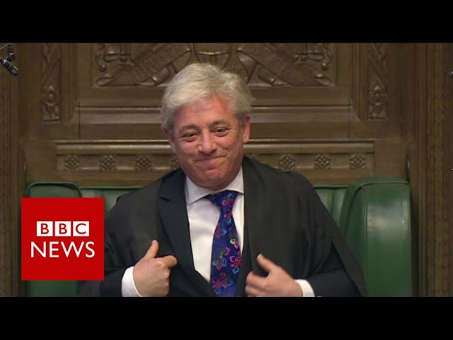 Bercow says Farron may be 'irritating' to Tories - BBC News