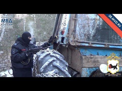 Погоня за трактором в лесу