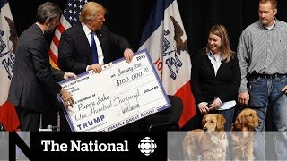 Trump Foundation to shut down amid allegations of 'shocking' illegality