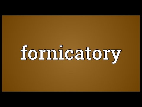 Header of fornicatory