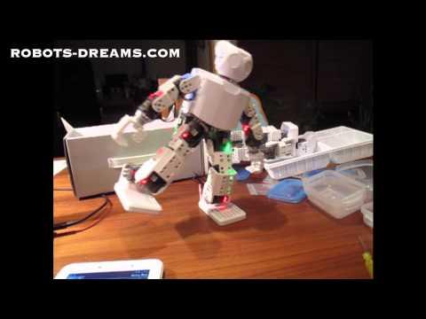 ROBOTIS DARWIN-MINI Humanoid Robot