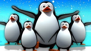 5 Chú Chim Cánh Cụt Nhỏ | Vần Điệu Trẻ | Bài Hát Trẻ Em | Five Little Penguins | Kids Tv Vietnam