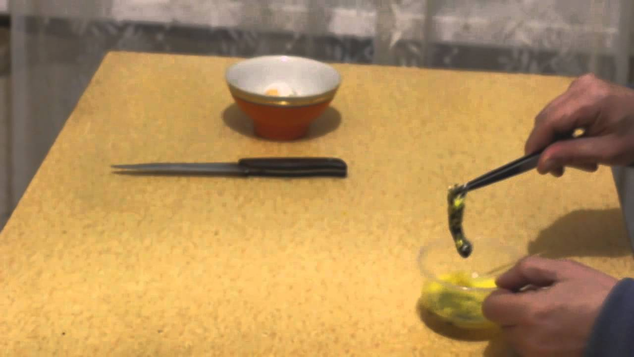 Как сделать гомункула в домашних условиях фото