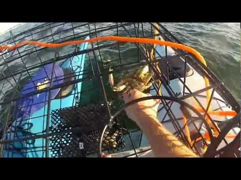 KAYAK CRAB FISHING IN ANACORTES WA