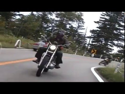 Harley Davidson Sportster kassi だぁ! Video