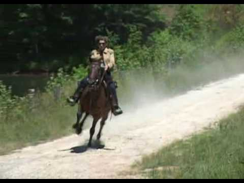 Annie 01 - Pacing Horse