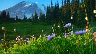 """Relaxing Music: Peaceful Music, Instrumental Music """"Nature's Landscapes"""" by Tim Janis"""