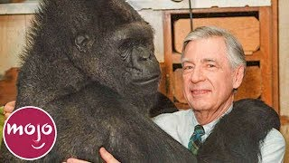 Top 10 Most Famous Animals in the World