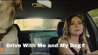 Drive With Me and My Dog!