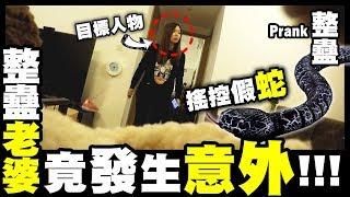 【Prank】搖控假蛇放梳化底...整蠱老婆竟然發生意外?!!!
