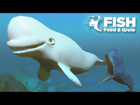 MOBY DICK EATS THEM ALL!!! - Fish Feed Grow