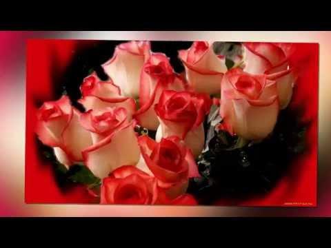 Открытки для женщин цветы розы 160