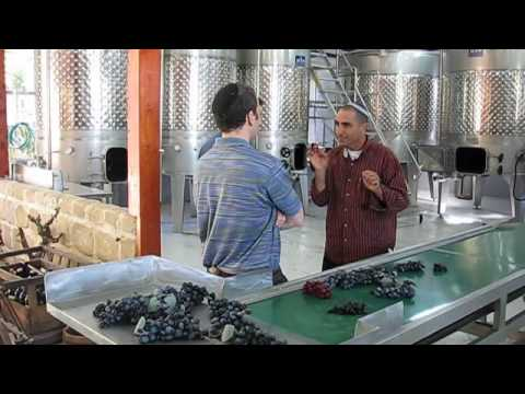 0 A private visit to Kitron Boutique Winery near Netanya