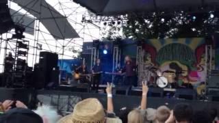 Watch Robert Plant 8:05 video