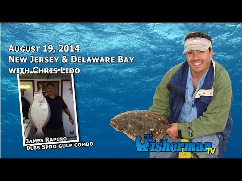 August 19 New Jersey/Delaware Bay Fishing Report with Chris Lido