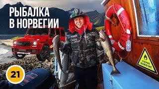Как заработать на тюнинге и тачках | Рыбалка в Норвегии