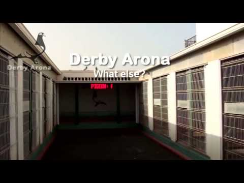 Arona-TENERIFE 2013 - Offshore Training-1