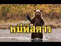 นางหมีพิสดาร (ไพฑูรย์ พันธุ์�