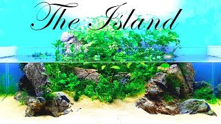 """THE ISLAND"" - Creation | (HOW TO: NO FILTER, NO HEATER, NO FERTS & NO CO2) 布景 水族"