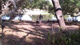 Snake Avoidance Training '09 via Flip Video