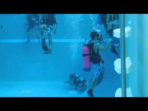Scuba Diving Classes offered in Florida at Dive Shop in Englewood, FL near Venice