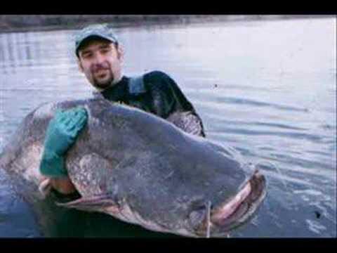 рыбалка в ласточкино