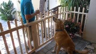 Build a Porch Gate