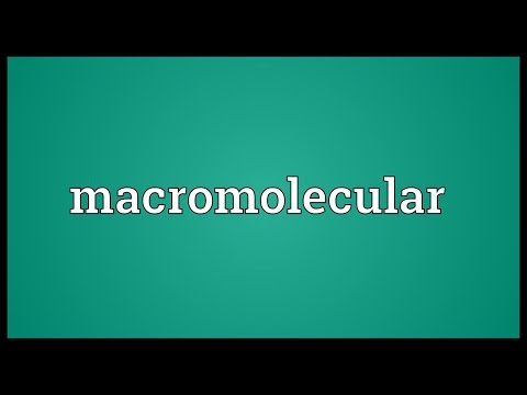 Header of macromolecular