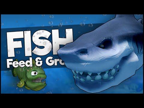 Killing Biggest Shark At Level 1 Feed And Grow Fish