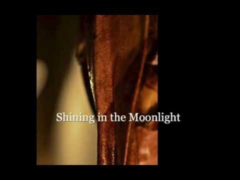 Jefferson Starship - Shining In The Moonlight
