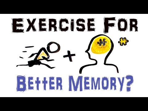 Does Exercise Improve Your Memory? (NEW STUDY) Exercise Makes the Brain Better and You Smarter?