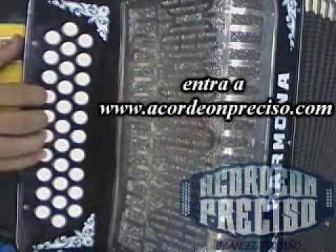 clases de acordeon flor de capomo