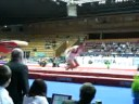 christian bazan stella zakarova 2008 vault
