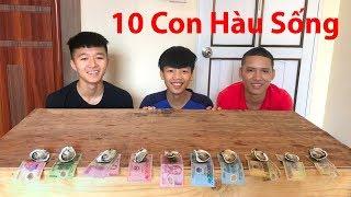 Hữu Bộ | Thử Thách Ăn Hết 10 Con Hàu Sống Tái Chanh Nhận Tiền Thưởng