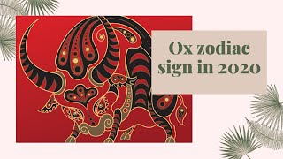 2020 prediction for ox horoscope