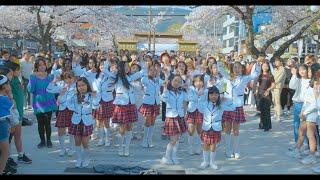 2019 K-POP RANDOM PLAY DANCE IN JINHAE, KOR 랜덤 플레이 댄스 2019