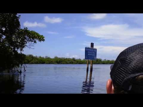 Kayaking at Commodore Creek Trail (Sanibel Island, FL)