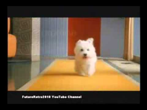Cesar Dog Food 2011 Commercial Youtube