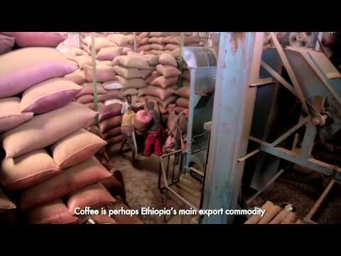Agricultural Value Chains in Oromia, Ethiopia. Long Version