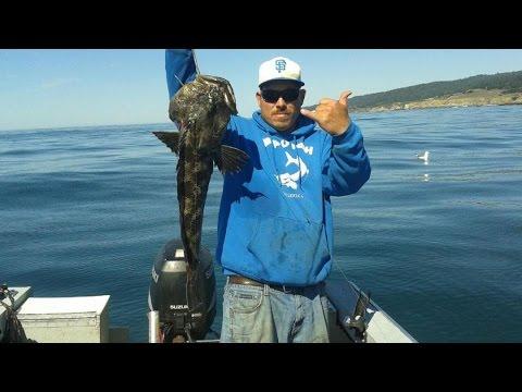 Off the HOOK California  Rockfish & Lingcod Fishing