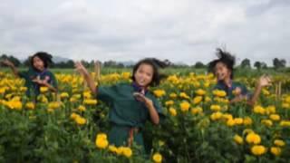Thinkttt Clipเพลง สระไอไม้ม้วน ภาษาไทย mpg3