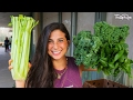 3 VEGGIES YOU NEED TO EAT DAILY!!