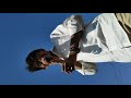 #झींगींभवरा अहीरानी गीत by Rajkamal brass Band SaTaNa Mo.9890359583