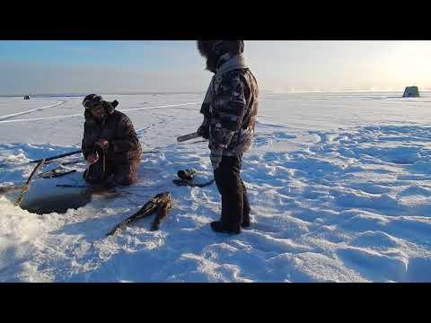 Рыбалка в сибири на севере и дальнем востоке видео