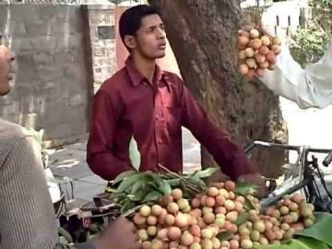 indian food - fruit salad, a (road)side dish