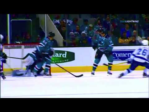▶ Martin St. Louis ◀ [HD]