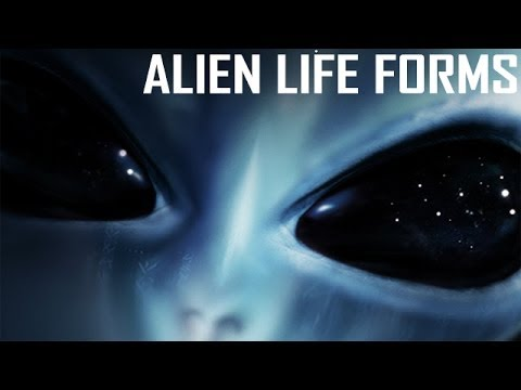 a research on extraterrestrial lifeforms and ufos Nasa scientist claims evidence of extraterrestrial life  indicates they are the remains of extraterrestrial life forms  hoover is not the only researcher to claim a discovery of alien life.