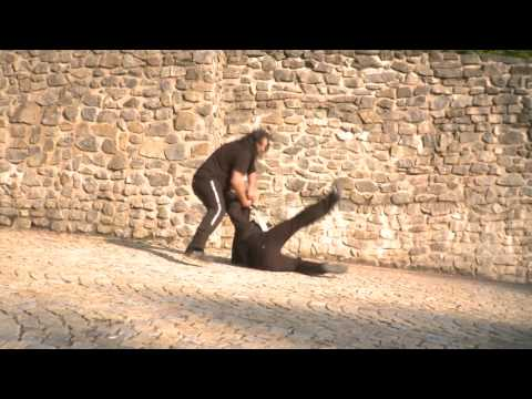 A.R.G.O. PROFILM: sword fight stunts - Warriors team showreel 2010
