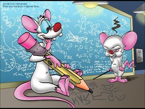 Вэбинар Pinky и Brain по созданию дорвеев.